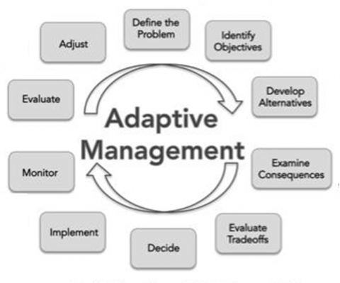 Parts of a decision-making process using adaptive management. Thresholds can help to identify objectives, examine consequences, and evaluate tradeoffs. As new threshold information is generated, ongoing adjustments can be made. Image modified from Staudinger et al. 2015, Allen et al. 2011 & Caves et al. 2013.