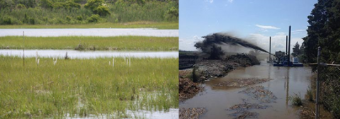 The Sachuest Point National Wildlife Refuge in Rhode Island is using thin-layer deposition to supplement marsh accretion and support the marsh plant species Spartina patens to combat accelerating rates of relative sea level rise. Credit: US Fish and Wildlife Service.