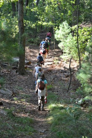 Line of people walking through a forested path. Photo credit: Emily S. Huff